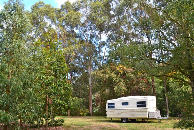 Free camping spot in Franklin Downs