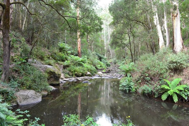 Dando's Camp Ground fishing hole