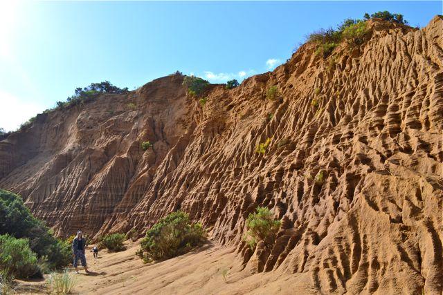 Johanna Beach dunes sand formations