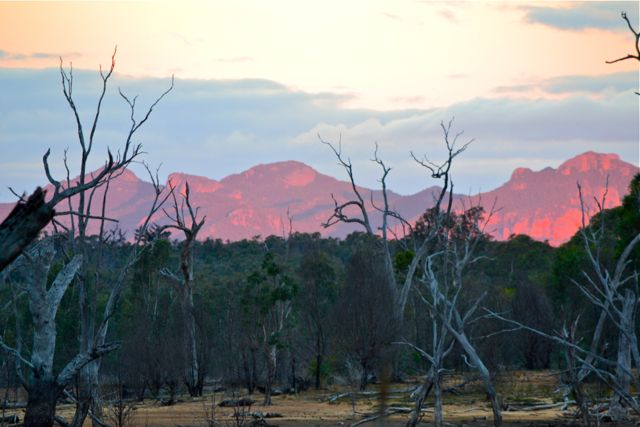 View of Grampians from Glendinning Campground