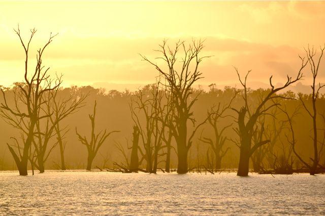 Rocklands Reservoir sunrise