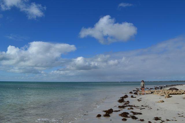 Yorke Peninsula Dunn Point