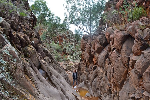 Looking for Aboriginal artwork in Sacred Gorge