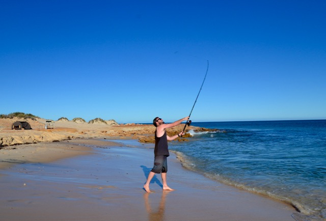 Shark Bay fishing
